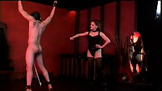 Mistress Jemini has her naughty slave in bondage and is ready for some CBT
