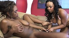 Two busty ebony babes use a few sex toys to reach the intense pleasure they desire
