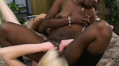 Sultry lesbian babe Dior is having wonderful experience with two crazy bitches